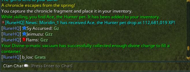 Ace Hunter pet.png